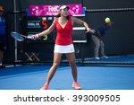 hua hin  thailand february 4... | Shutterstock . vector #393009505