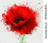 Beautiful Red Poppy  Closeup O...