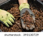 The Worm Composting Is A Great...