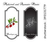 goji berry  lycium barbarum  or ... | Shutterstock .eps vector #393131779