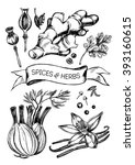 hand drawn set of herbs and... | Shutterstock .eps vector #393160615