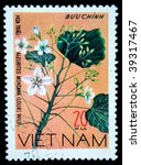 Small photo of VIETNAM - CIRCA 1978: A stamp printed in Vietnam shows Candlenut - Aleurites Montana, series, circa 1978