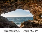 Animal Flower Cave In Barbados...