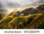 terraced rice field in longji... | Shutterstock . vector #393188599