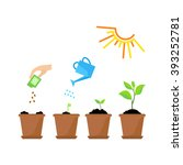 line sprout and plant growing.... | Shutterstock .eps vector #393252781