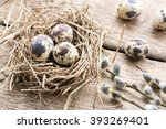 Nest With Eggs Of Quails And...
