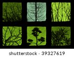 trees and plants details... | Shutterstock . vector #39327619