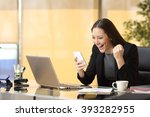 excited businesswoman winning... | Shutterstock . vector #393282955