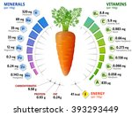 vitamins and minerals of carrot ... | Shutterstock . vector #393293449