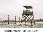 snow covered concentration camp ... | Shutterstock . vector #393313924