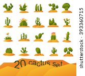 Different Types Of Cactus...