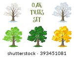 oak trees set  seasons | Shutterstock .eps vector #393451081