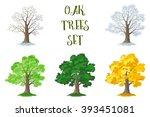 oak trees set  seasons | Shutterstock .eps vector #393451081