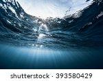 Underwater Shot Of The Sea...