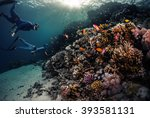 two freedivers swimming... | Shutterstock . vector #393581131
