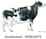 Milking Cow Watercolor...