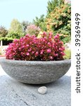 Stone bowl with pink flowers in summer garden - stock photo