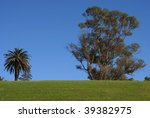 Trees and green grass on a blue sky background - stock photo