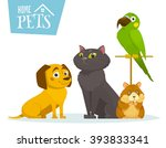 Stock vector home pets sitting in line isolated on white vector cartoon illustration cat dog hamster bird 393833341