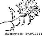 flower on white background | Shutterstock . vector #393911911