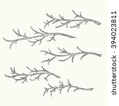 set of hand drawn branches. | Shutterstock . vector #394023811