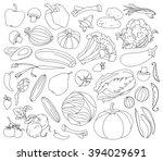 doodle  set of vegetables | Shutterstock . vector #394029691