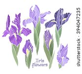 iris flowers  set of color...   Shutterstock .eps vector #394047235