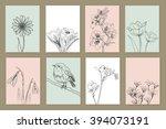 drawn spring flowers.