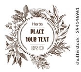 vector background sketch herbs. ... | Shutterstock .eps vector #394146961