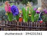 Spring Gardening. Garden...