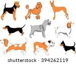dogs breeds   recognizable... | Shutterstock .eps vector #394262119
