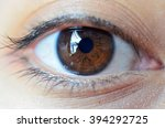 brown eyes | Shutterstock . vector #394292725