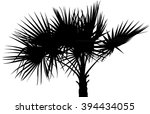 palm tree silhouette | Shutterstock .eps vector #394434055