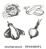set of vintage images of... | Shutterstock . vector #394448491
