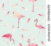 Flamingo Bird Background....