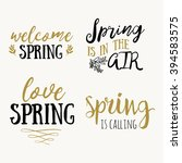 hello spring hand drawn... | Shutterstock .eps vector #394583575