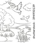 Coloring Pages. Two Ducks Fly...