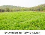 Mound Slope Green Grass