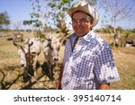 farming and cultivations in... | Shutterstock . vector #395140714