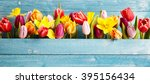 colorful arrangement of fresh... | Shutterstock . vector #395156434