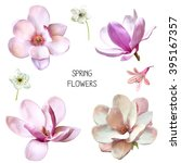 Stock photo illustration of beautiful blue pink flowers set of spring flowers cherry blossoms bell flower 395167357