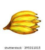 bananas watercolor  musa...   Shutterstock . vector #395311015