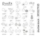 hand drawn outline fruits... | Shutterstock .eps vector #395327935