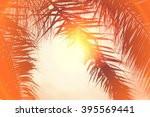 palm trees at california beach... | Shutterstock . vector #395569441