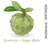 Sugar Apple  Custard Apple ...