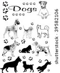 Stock vector dogs vector 39582106