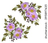 branch of wild rose pink ... | Shutterstock . vector #395897635