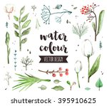 Premium quality watercolor icons set of spring floral blossom, various herb plants. Hand drawn realistic vector decoration with text lettering. Flat lay watercolor objects isolated on white background