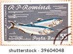Small photo of ROMANIA - CIRCA 1960: A stamp printed in Romania shows image of two mackerel (Alosa pontica), series, circa 1960