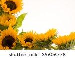 beautiful  fresh yellow...   Shutterstock . vector #39606778